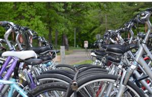 rentals_bikes