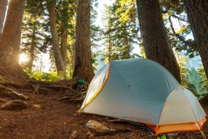 7 Tips For Budget-Friendly Camping