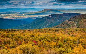 Camping In Luray, VA: Explore Shenandoah National Park & Luray Caverns