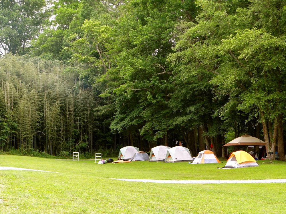 Pigeon River Campground Hartford Tennessee Camp Native