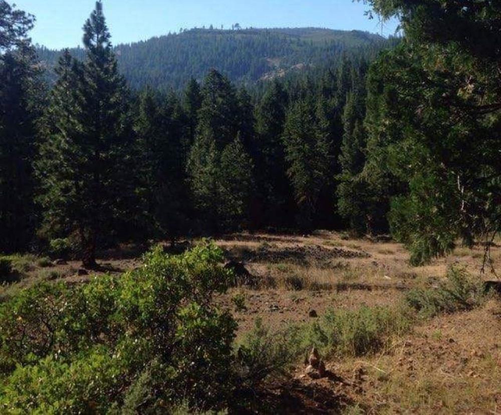 Top California RV Parks - Camp Native