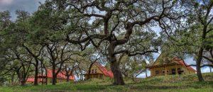 Crider's Frio River Resort: Concan, Texas