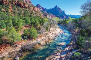 Top 5 Family Hikes In Zion National Park