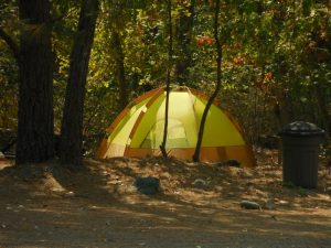 Coffee Creek Campground RV Park: Coffee Creek, California