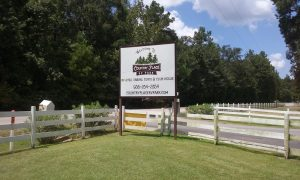 Country Place RV Park: Conroe, Texas