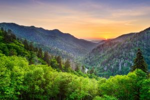 5 Beautiful Smoky Mountain Cabins For Summer Adventure