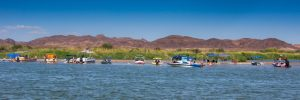 Walters Camp RV Park & Campground: Palo Verde, California