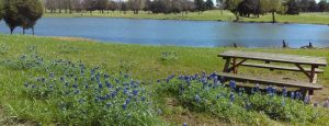 Stinson RV Park & Resort: Campbell, Texas