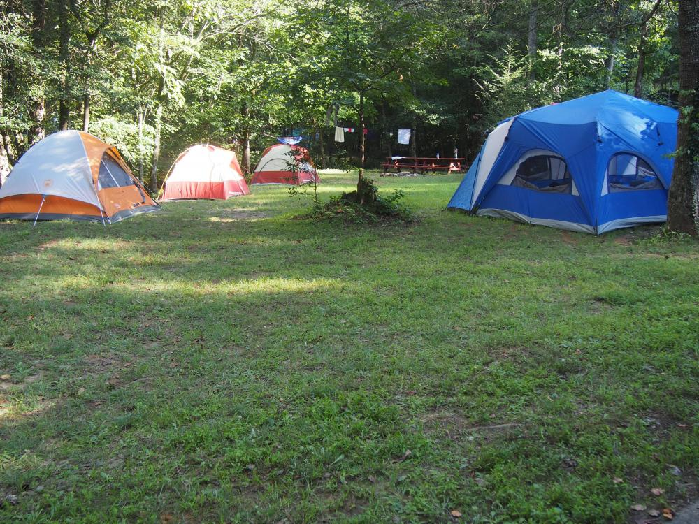 Sugar Mill Creek Rv Resort Clarkesville Georgia Camp