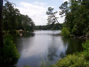 Woodsy Hollow Campground & RV Resort: Goodrich, Texas